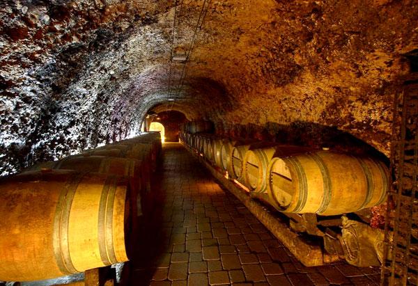 Evadium Visita A Bodega Subterranea De Laguardia