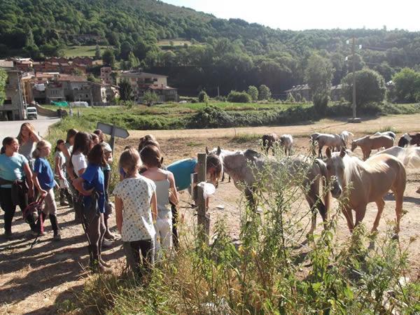 Evadium ruta guiada a caballo por el valle de camprod n - El valle de los caballos ...