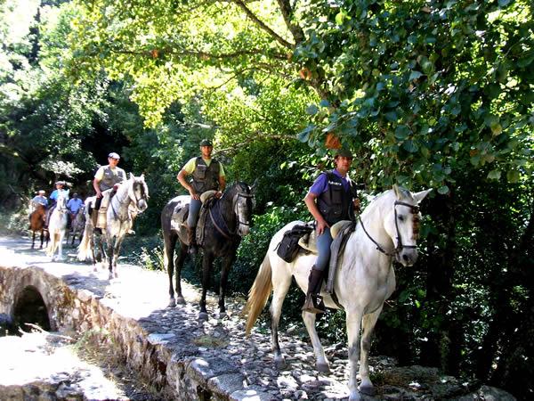 Evadium paseo a caballo por valle del jerte - El valle de los caballos ...
